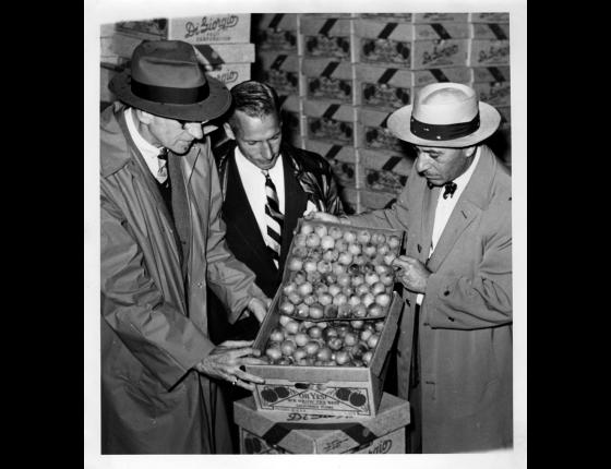 About The California Fresh Fruit Association - Image: 2